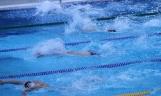 Mistrzostwa Wielkopoplski w Pływaniu Drużynowym