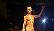 Celebrowaliśmy potencjał ludzkiego ciała ...